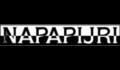 logo_napapijri